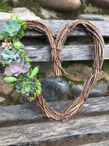 "12"" LIVE succulent heart wreath, Valentine's Day gift, living gift idea"