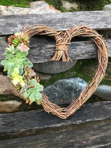 "9"" live succulent grapevine wreath, Valentine's Day gift, living gift"