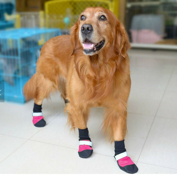 4 pcs Dog boots shoes waterproof sole Helps protect against alabama rot