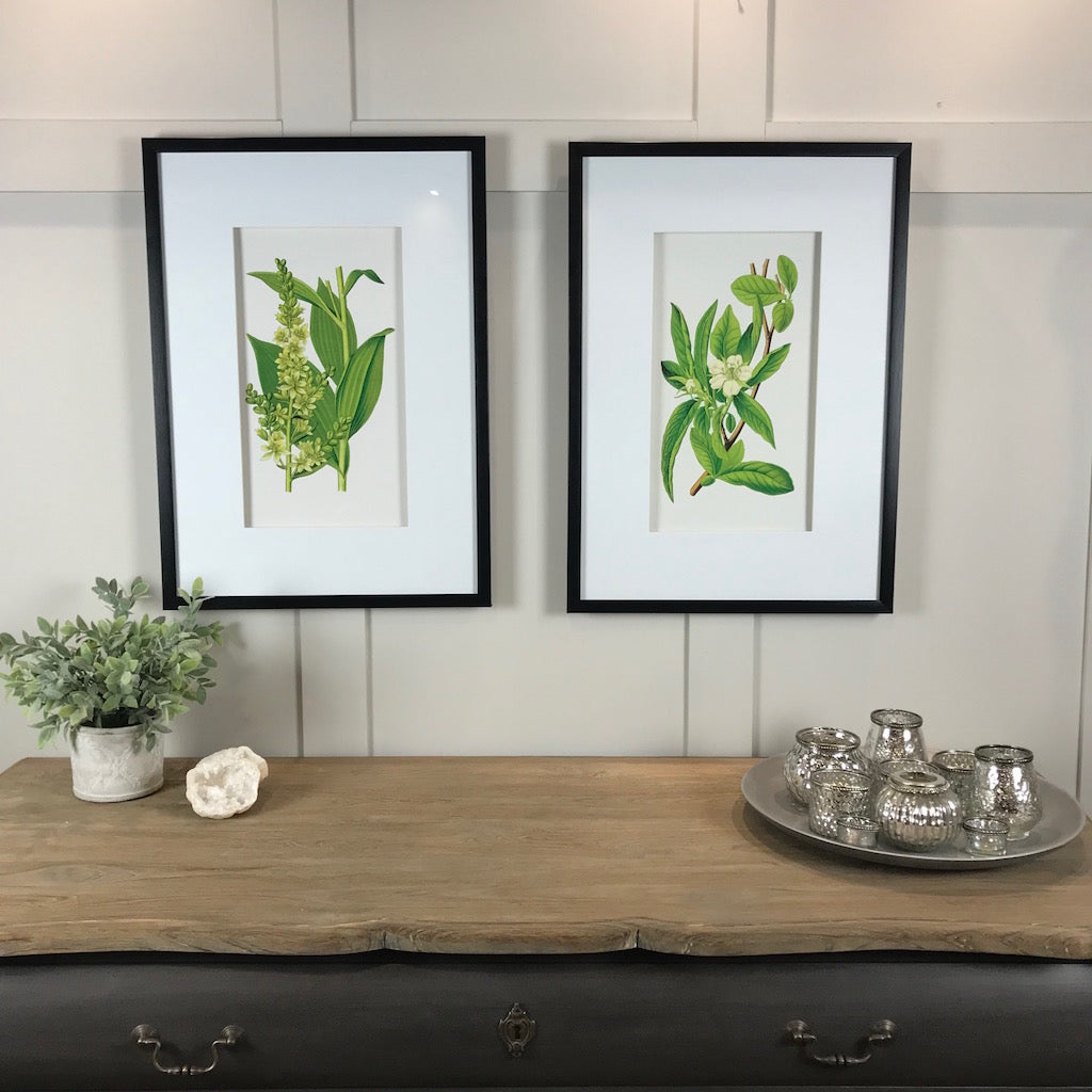 English Garden Floral Framed Prints Pair Set 2