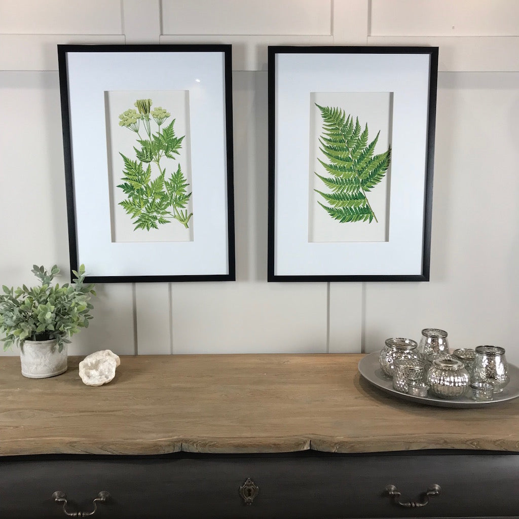 Fern Floral Picture Set 1