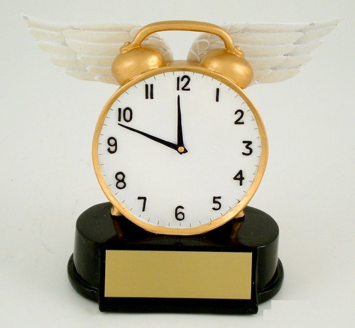 Time Flies Resin Award