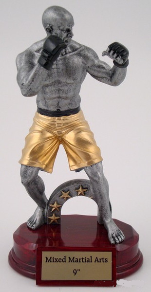 KARATE FREE ENGRAVING MIXED MARTIAL MARTS//MMA TROPHY