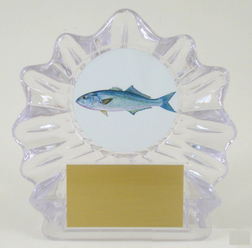 Fish Logo on Small Shell Acrylic Trophy