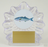 Fish Logo on Small Shell Acrylic Trophy-Trophies-Schoppy's Since 1921