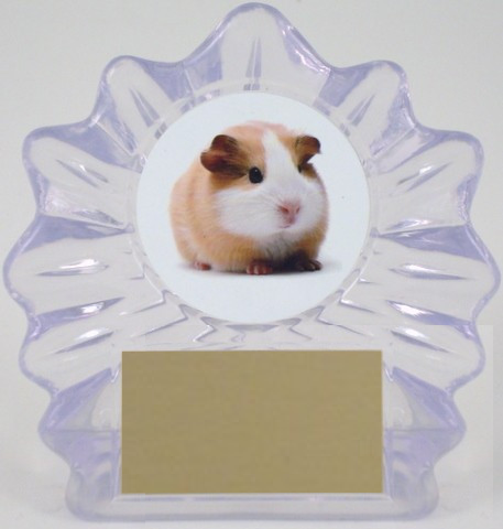 Small Flame Trophy with Full Color Guinea Pig-Trophies-Schoppy's Since 1921