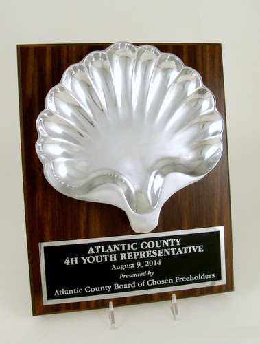 Pewter Shell Plaque-Plaque-Schoppy's Since 1921