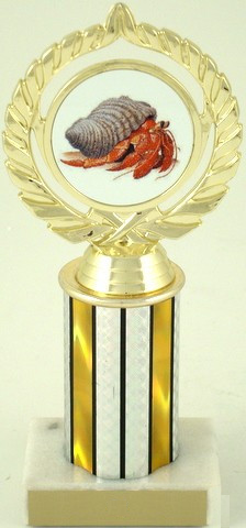 "Hermit Crab Trophy on 3"" Column-Trophies-Schoppy's Since 1921"