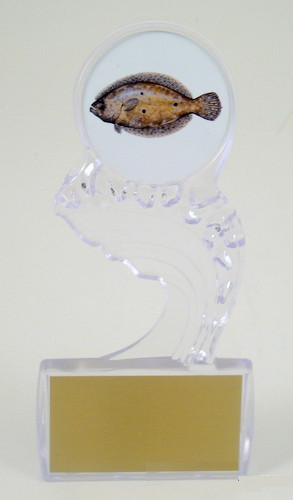 Fish Logo on Crest of the Wave Large Acrylic Trophy