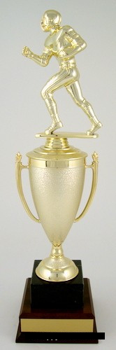 Football Cup Trophy on Black Marble and Wood Base