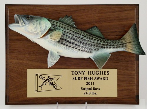 Striped Bass Plaque-Plaque-Schoppy's Since 1921