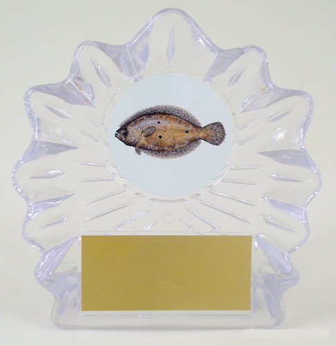Fish Logo on Large Shell Acrylic Trophy