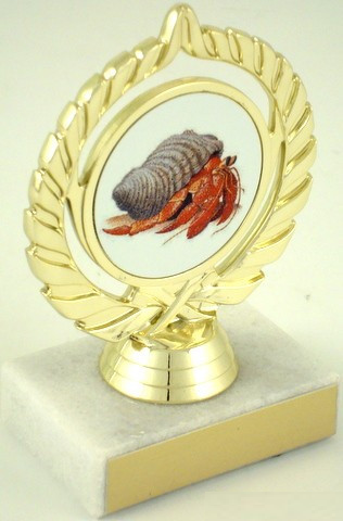 Hermit Crab Trophy