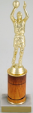 Basketball Trophy with Custom Round Column-Trophies-Schoppy's Since 1921