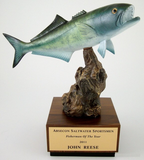 Bluefish on Driftwood and Wood Base-Trophies-Schoppy's Since 1921