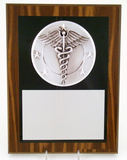 "Caduceus Plaque 9"" x 12""-Plaque-Schoppy's Since 1921"