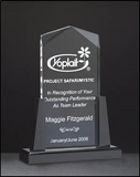Acrylic Award - Clear Acrylic on Black Acrylic Base-Acrylic-Schoppy's Since 1921