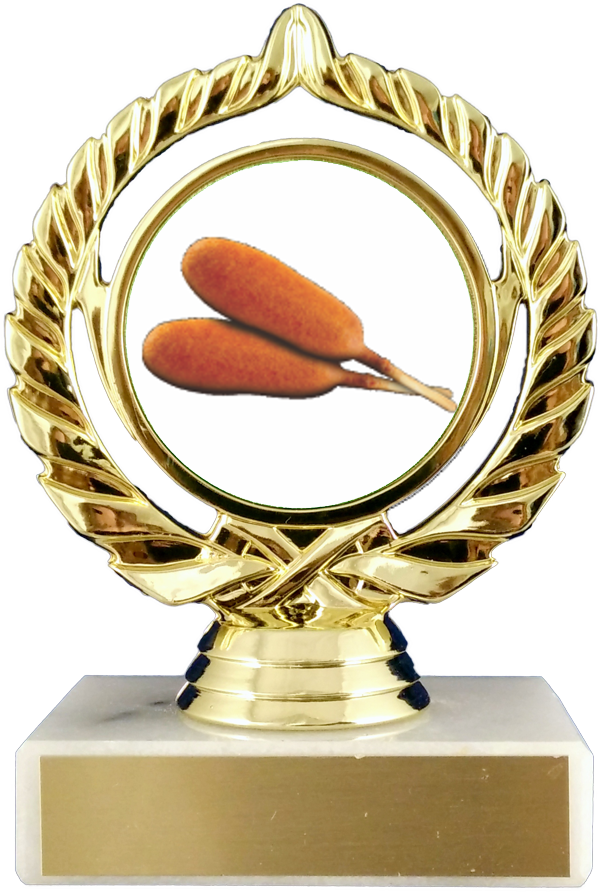 Corn Dogs Logo Trophy On Flat White Marble