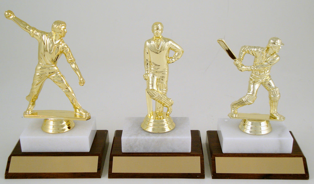 Cricket Player Trophy On Wood And Marble Base