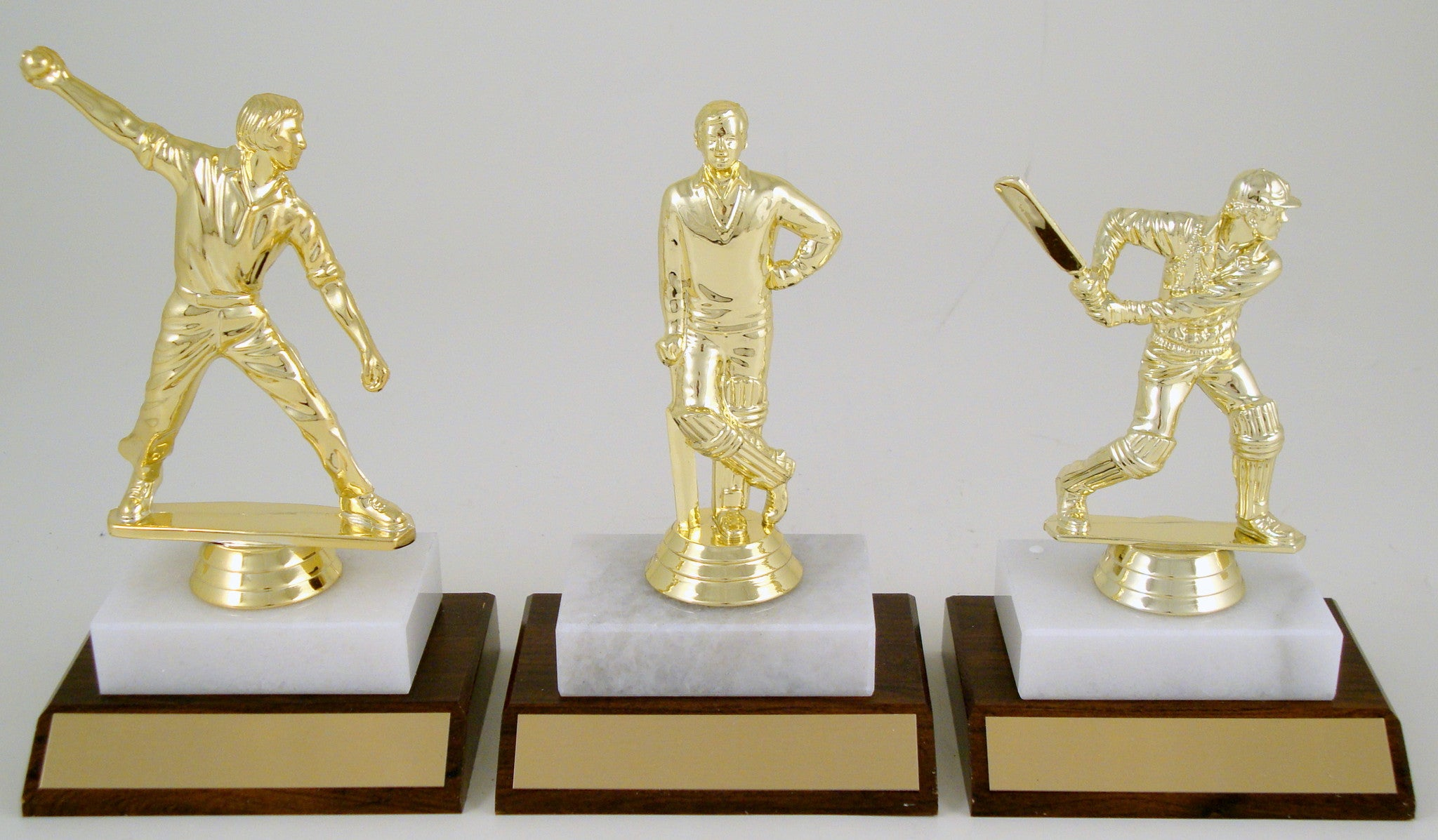 Cricket Player Trophy On Wood And Marble Base Schoppy S