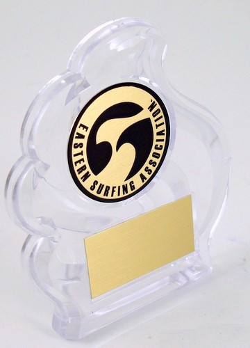 Small Wave Acrylic Trophy