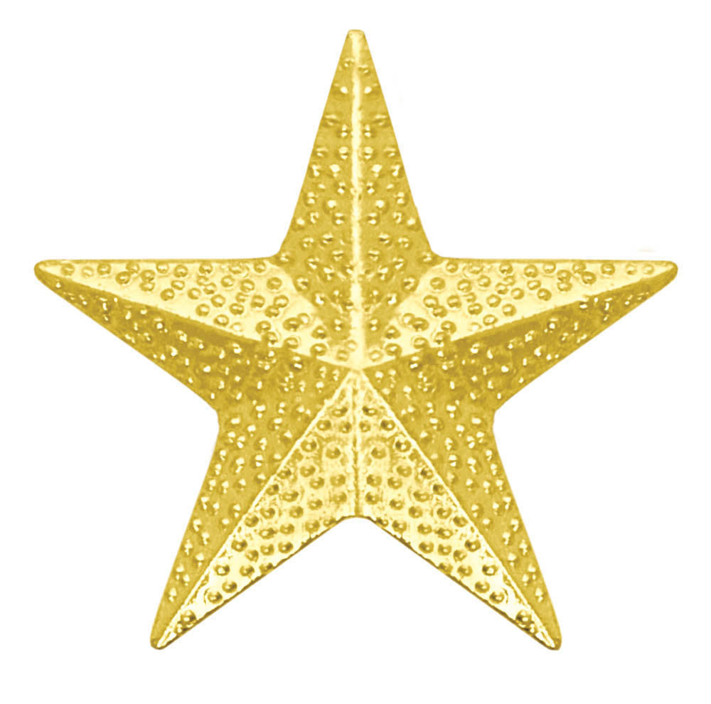 Star Chenille Pin