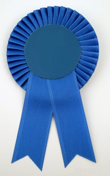 Custom Small Rosette Ribbons