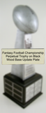Annual Update Plate for Fantasy Football Championship Perpetual Trophy on Black Wood Base-Plate-Schoppy's Since 1921