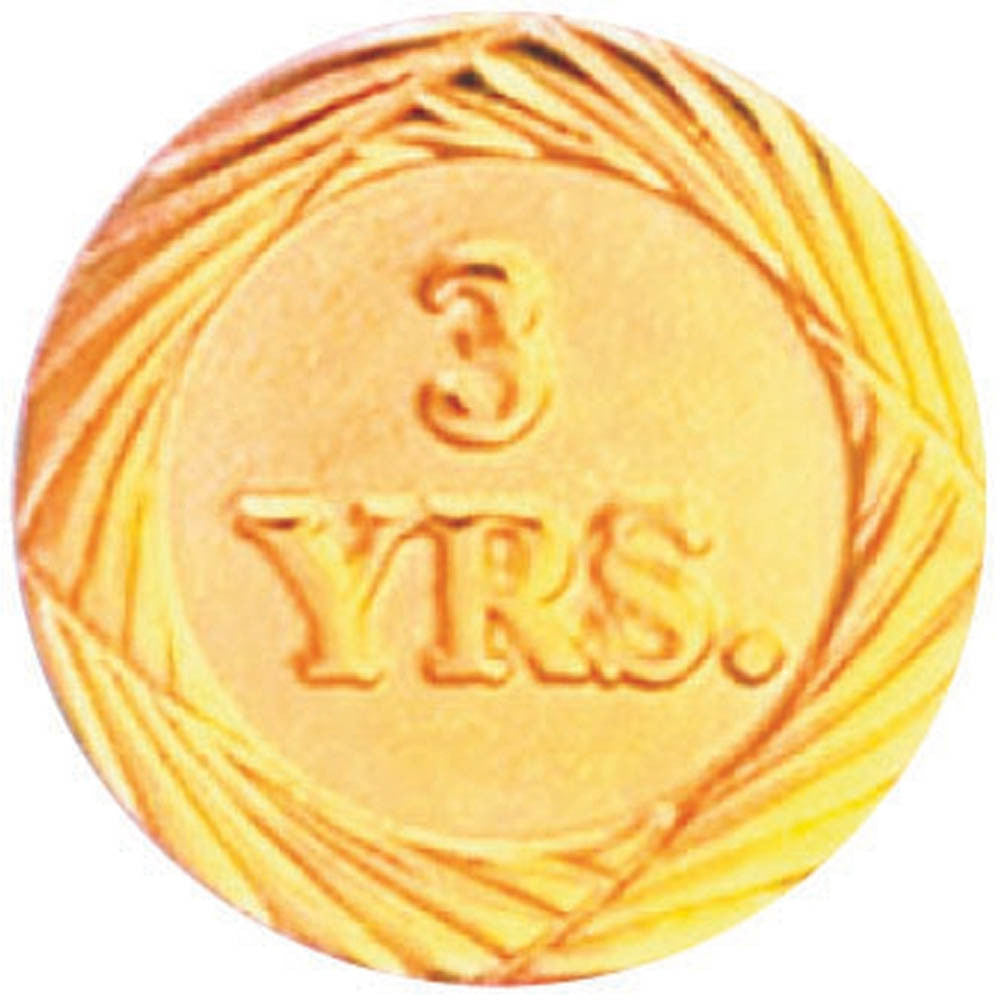 Years of Service Pin - Three Years-Pin-Schoppy's Since 1921