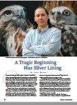 David Kitler - Wildlife Art Article
