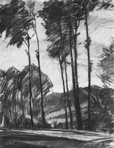 IN THE BLUE RIDGE MOUNTAINS - Charcoal - by Carl Dalio