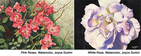 Pink Roses, White Roses by Joyce Durkin