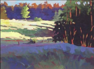 Paint Acrylic Landscapes:  Understanding Sun & Shadow with Mark Mehaffey