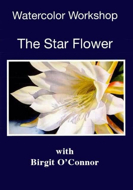 Watercolor Workshop - The Star Flower with Birgit O'Connor