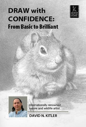 Draw with Confidence: From Basic to Brilliant with David Kitler Art Instruction Video-DVD from Creative Catalyst