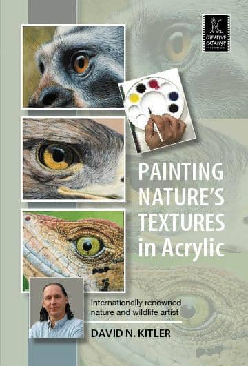 Painting Nature's Textures in Acrylic with David N. Kitler Art Instruction Video-DVD from Creative Catalyst