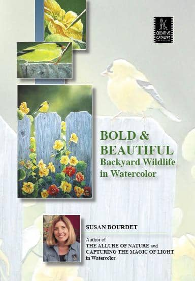 Bold & Beautiful: Backyard Wildlife in Watercolor with Susan Bourdet Art Instruction Video-DVD from Creative Catalyst