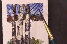 A Little Watercolour with Karin Huehold Art Instruction Video-DVD from Creative Catalyst