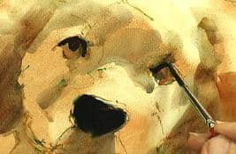 Animal Portraits in Watermedia with Pat Weaver Art Instruction Video-DVD from Creative Catalyst