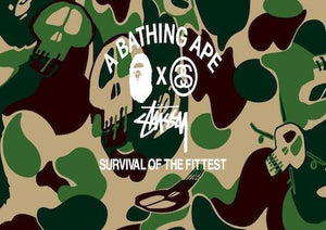 Stussy x BAPE: Survival of the Fittest