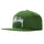 Big Stock Cap - Green