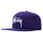 Big Stock Cap - Purple
