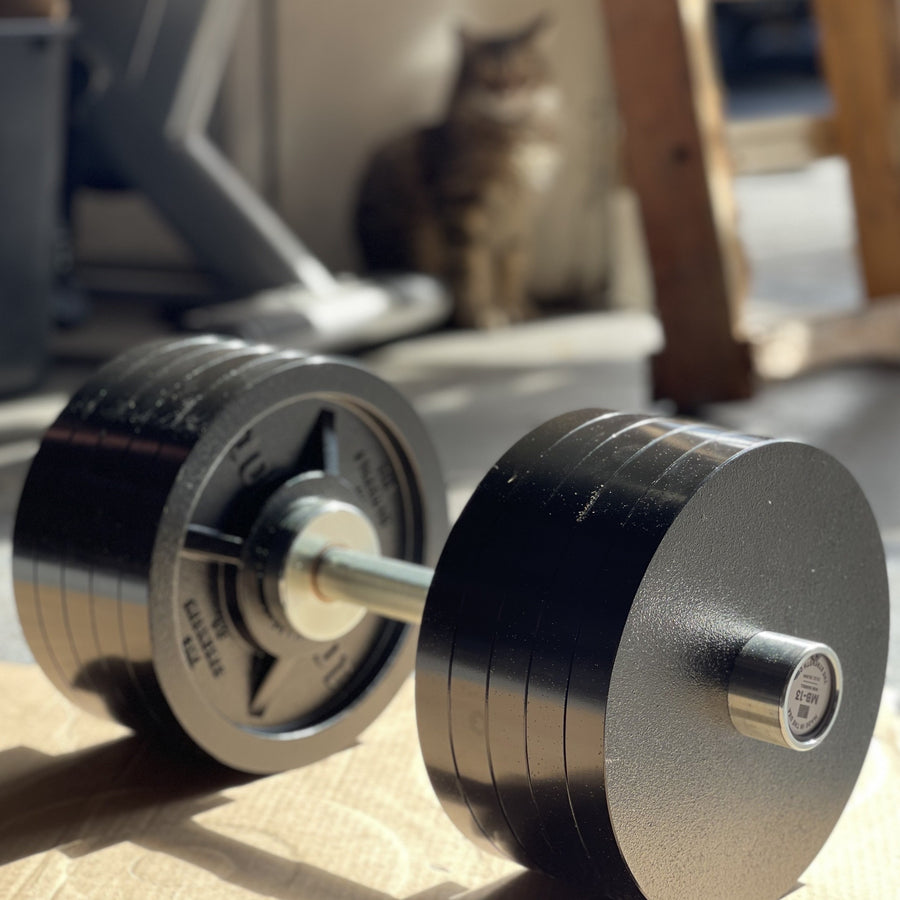 Loadable Dumbbell - Made In USA