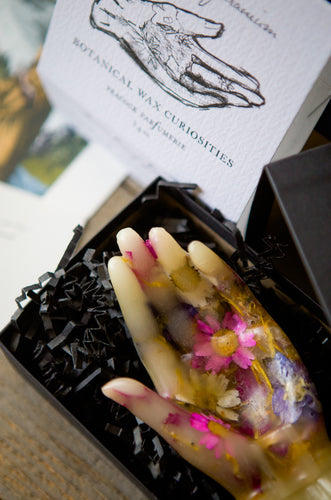 Botanical Wax Curiosities Hand
