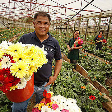 Eldest of the Puentespina siblings Angel Puentespina takes care of the cacao and orchid farms.