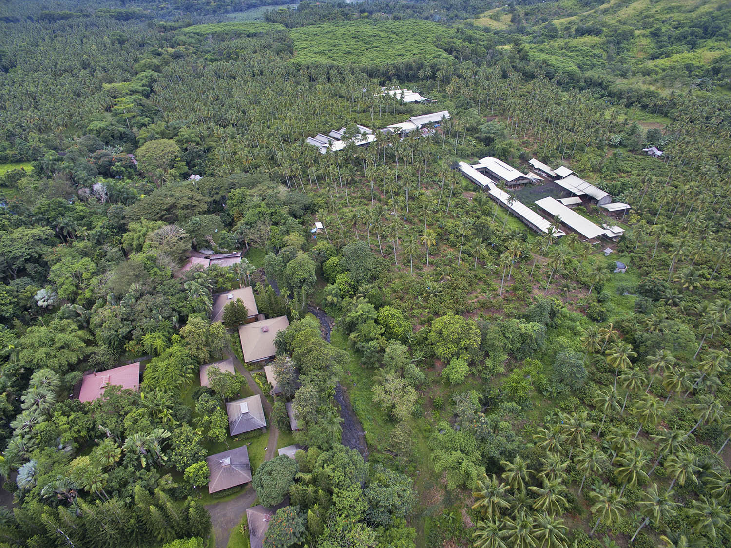 Malagos Chocolate's cacao farm –– Puentespina Farm