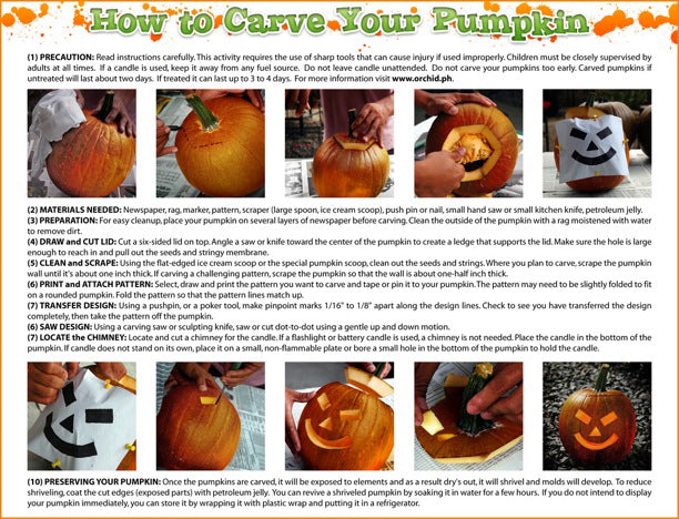 For Sale authentic pumpkins, proudly grown in Davao City Philippines, for carving this halloween season. Visit our stores .