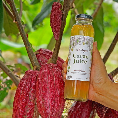 New!  Malagos Cacao Juice 🥤 Set of three (3) or six (6) bottles 🥤