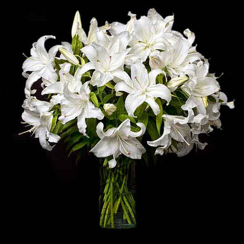 Shop online for cut flowers-Casablanca liliums / lilies. Delivers in the Philippines! Buying flowers made easy!