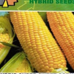 Shop online for Sweet Corn vegetable seeds. Delivers in the Philippines. Adding greenery made easy